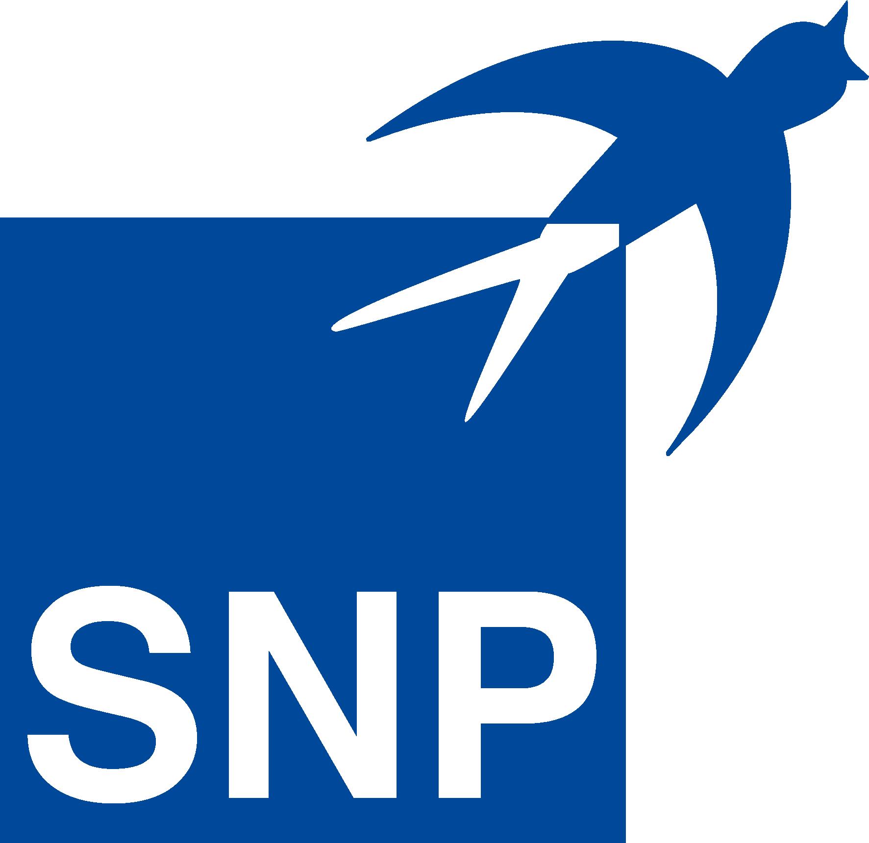 SNP Schneider-Neureither & Partner SE